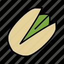 culinaty, flavor, nut, pistache, pistachio, spice, taste icon