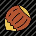 culinary, hazelnut, ingredient, nut, seasoning, taste, spice