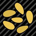 condiment, culinary, ingredient, pine nut, pinenut, spice, taste icon