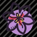cook, herb, ingredient, plant, saffron, saffron flower, spice icon
