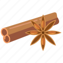 cinnamon, cooking, ingredients, masala, spices, star anise icon