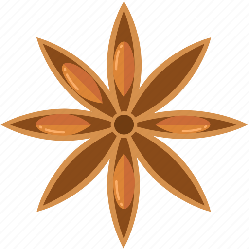 cooking, ingredient, ingredients, masala, seeds, spices, star anise icon
