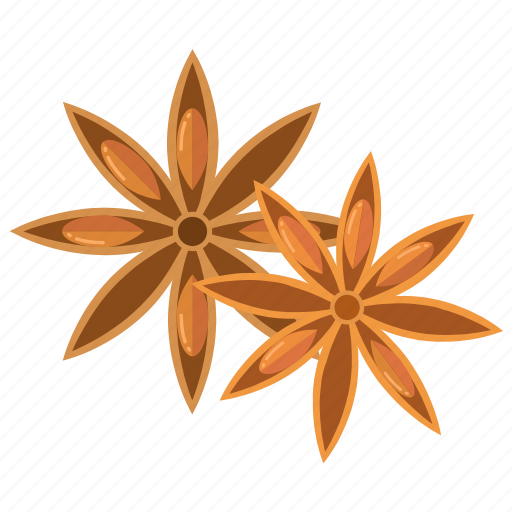 cooking, ingredient, ingredients, masala, spices, star anise icon