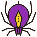 halloween, insect, poison, spider icon
