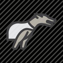 dog race, dog racing, dogbetting, game, racing icon