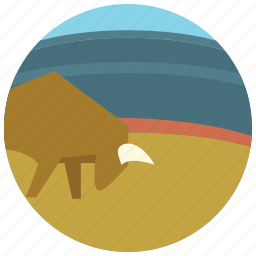 arena, bull, danger, ring, sports icon