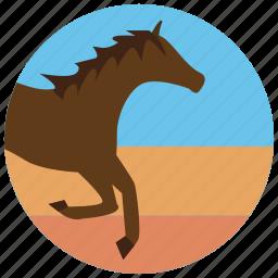horse, riding, run, sports icon