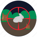 bush, hunting, forest, rabbit, sports