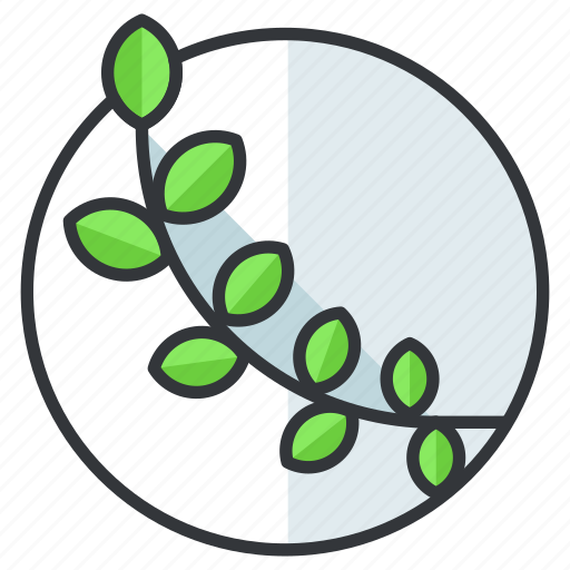 Leaf, olympic, sports, vine icon - Download on Iconfinder