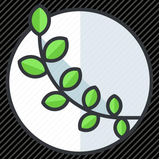 leaf, olympic, sports, vine icon