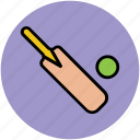 ball, bat, cricket, game, sports, sports accessories icon