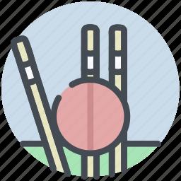 ball, cricket, fitness, stumps icon