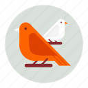 animal, animals, bird, birds icon