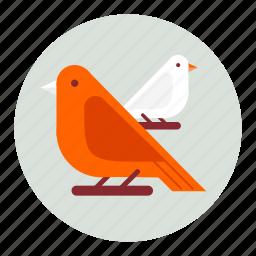 animal, animals, bird, birds icon