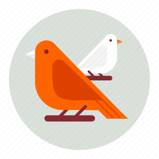 Birds, animals, bird, animal icon - Download on Iconfinder