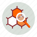 explore, laboratory, magnify, magnifying, research, science, zoom icon