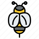 bees, animal, nature, fly