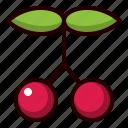 cherry, cherries, berry, fruit