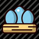 eggs, nest, spring, animal