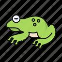 frog, animal, amphibian, wildlife