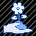 flower, hand, nature, blossom