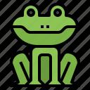 frog, animal, nature, kingdom, crown