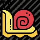 snail, animal, wild, kingdom, zoo