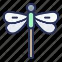 dragonfly, spring, plant, nature, season, natural