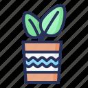 leaf, spring, plant, nature, season, natural