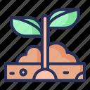planting, spring, plant, nature, season, natural
