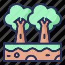 trees, spring, plant, nature, season, natural