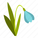 blossom, flower, nature, petal, plant, snowdrop, spring icon
