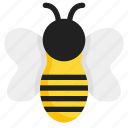 bee, bug, honey, insight
