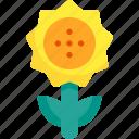 flower, nature, spring, sunflower