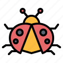animal, bug, insect, kingdom, ladybug icon