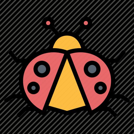 animal, bug, insect, kingdom, ladybug icon