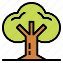 botanical, garden, nature, tree icon