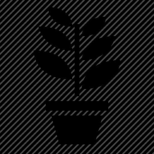 Garden, leaf, nature, plant icon - Download on Iconfinder