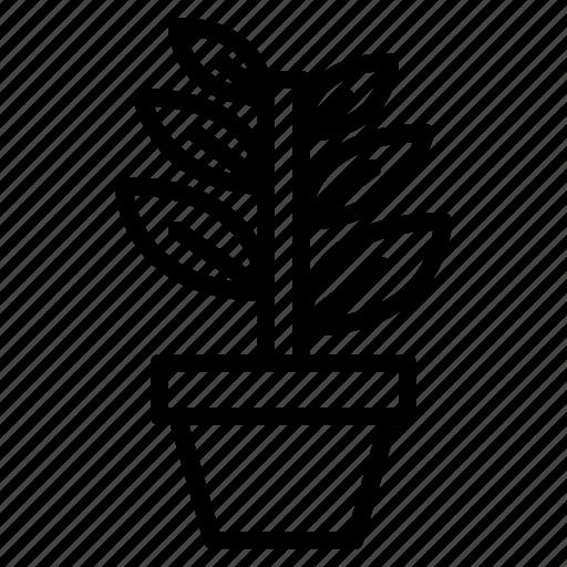 garden, leaf, nature, plant icon