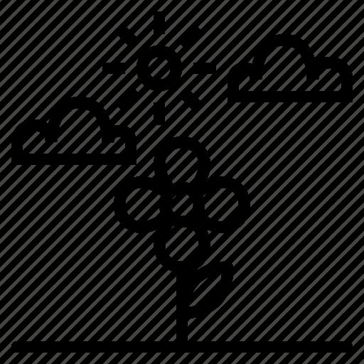 flower, green, spring, tree icon
