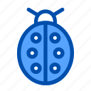 bug, ecology, flower, insect, ladybug, nature, spring icon