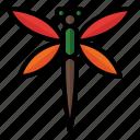 spring, season, nature, animal, bug, dragonfly