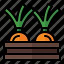 spring, season, nature, basket, harvest, shallot, onion