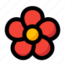 bloom, bloodroot, spring, blossom, flower icon