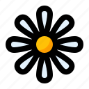 chamomile, flower, herb, plant, spring icon
