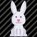 animal, bunny, nature, rabbit, season, spring, weather