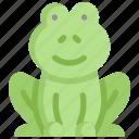 animal, frog, nature, season, spring, toad, weather
