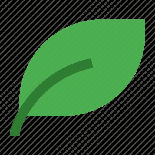 eco, leaf, spring icon