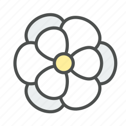 blossom, flower, magnolia, nature, spring icon