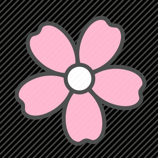 blossom, flower, nature, sakura, spring icon